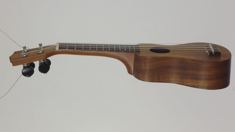 Ukulele, Becoming a New Sensational Instrument!
