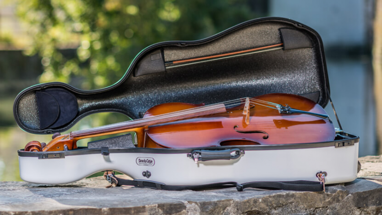 Proper Ways to Clean Your Cello and Case